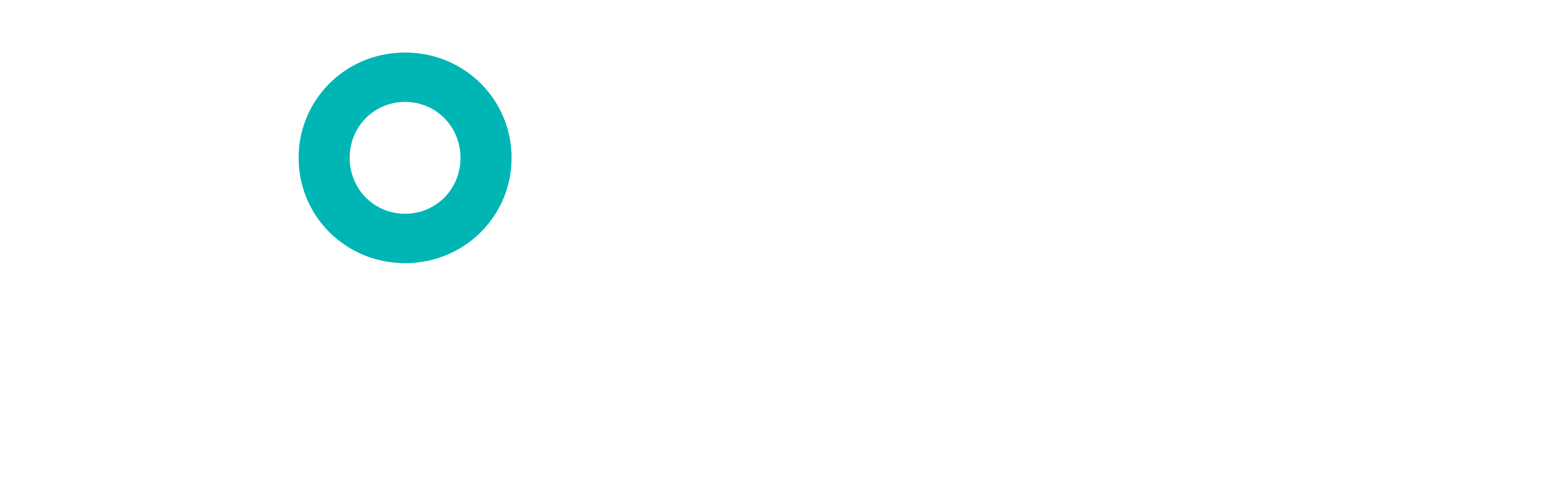 Monster Strategic Talent Solutions